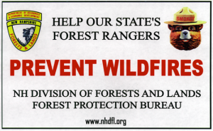 Cornish_Fire_Help_Our_Forest_Rangers