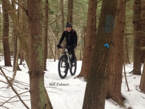 January 2016: Bill Palmer biking in the town forest with studded tires.